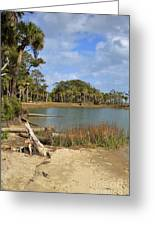 Lowcountry Lagoon Greeting Card by Louise Heusinkveld