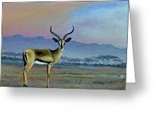 Lowell's Gazelle Greeting Card