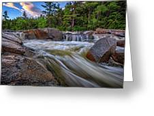 Lower Falls Of The Swift River Greeting Card