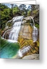 Lower Falls Profile At Enfield Glen Greeting Card