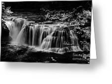 Lower Lewis Falls Washington State Greeting Card