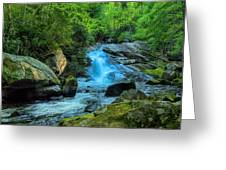 Lower Lynn Camp Falls Smoky Mountains Greeting Card