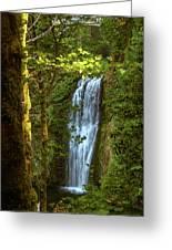 Lower Multanomah Falls, Oregon Greeting Card