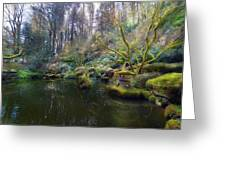 Lower Pond At Portland Japanese Garden Greeting Card