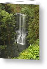 Lower South Falls Greeting Card