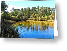 Lower Suwannee National Wildlife Refuge Ti Greeting Card