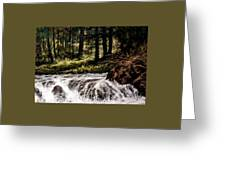 Lucia Falls In July Greeting Card