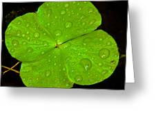 Lucky Charm Greeting Card