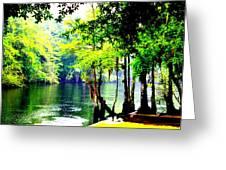 Lumber River Greeting Card