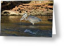 Lunch On The Neuse River Greeting Card by George Randy Bass