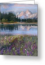 Lupines At Pilgrim Creek Greeting Card