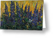 Lupins Greeting Card