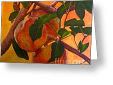 Luscious Apples Greeting Card