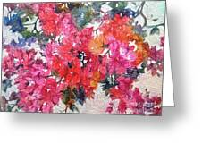 Luscious Bougainvillea Greeting Card by Michelle Abrams