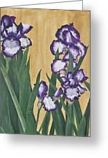 Luscious Iris Greeting Card