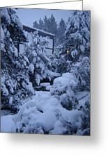 Luscious Snowfall Greeting Card