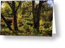 Lush Garden Greeting Card