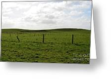 Lush Green Grass On The Cliffs Of Moher Greeting Card