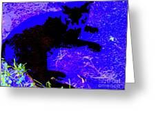 Luxury Cat Greeting Card