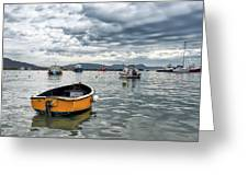 Lyme Regis Harbour - March Greeting Card
