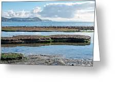 Lyme Regis Seascape 2 - October Greeting Card