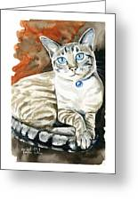 Lynx Point Siamese Cat Painting Greeting Card