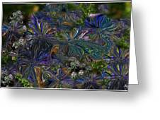 Lysergic Asters Greeting Card