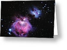 M42--the Great Nebula In Orion Greeting Card