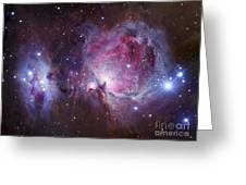 M42, The Orion Nebula Top, And Ngc Greeting Card by Robert Gendler