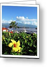 Maalaea Boat Harbor Greeting Card