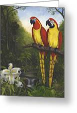Macaws And Lillies Greeting Card