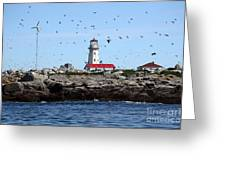 Machias Seal Island Lighthouse Greeting Card