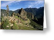 Machu Picchu And Bromeliad Greeting Card