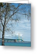 Mackinac Bridge Birch Greeting Card