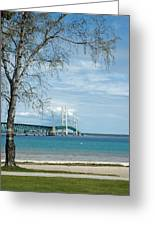 Mackinac Bridge Park Greeting Card