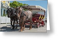Mackinac Island Horse Carriage Greeting Card