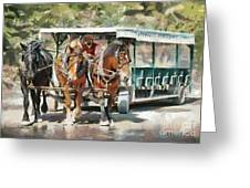 Mackinac Island Transportation - Surrey With The Fringe On Top Greeting Card
