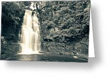 Maclean Falls New Zealand Greeting Card
