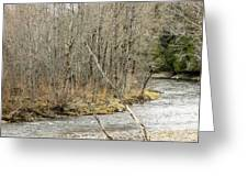 Madawaska Stream Bend Greeting Card