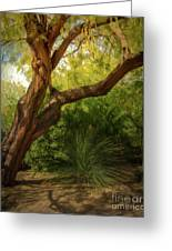 Made In The Shade Greeting Card