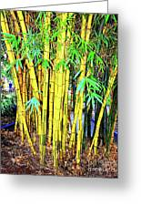 City Park Bamboo Grass Greeting Card