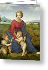 Madonna In The Meadow Greeting Card