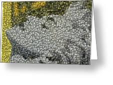 Madonna True Blue Material Girl Coins Mosaic Greeting Card