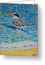 Maestro Of The Beach Greeting Card
