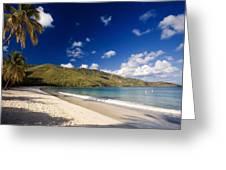 Magens Bay Morning St Thomas Us Virgin Islands Greeting Card