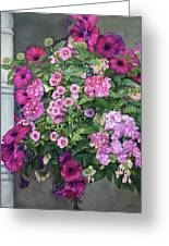 Magenta Petunias Greeting Card