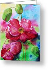 Magenta Poppies Greeting Card