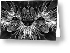Magenta Until - Black And White 2 Greeting Card
