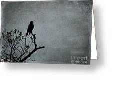 Magestic Crow Greeting Card