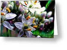 Magic Blossoms Greeting Card